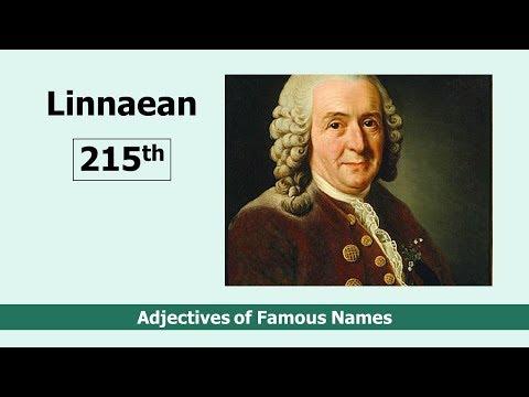 Linnaeus: The Linnaean system of taxonomy, incl. human racial types