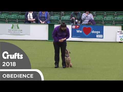 Inter-Regional Obedience - Reserve Class - Part 1 | Crufts 2018