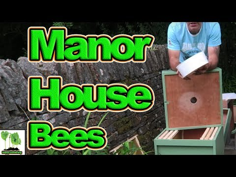 Setting Up Two Honeybee Swarms In An 18th Century Manor House