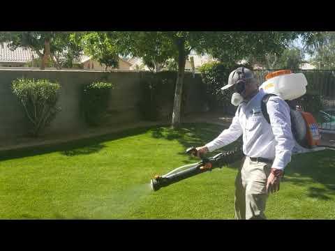 Bug Guardian Pest Prevention Mosquito Fogging Gilbert AZ