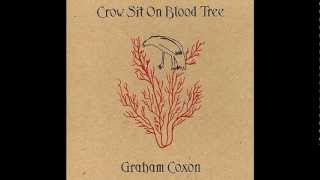 Graham Coxon - Empty Word