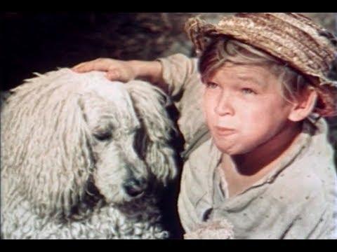 Белый пудель (1955) Александр Куприн