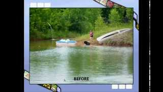 Newfoundland Dog Water Rescue Training Site Ne Wi