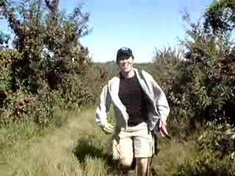 I m runing in the apple garden