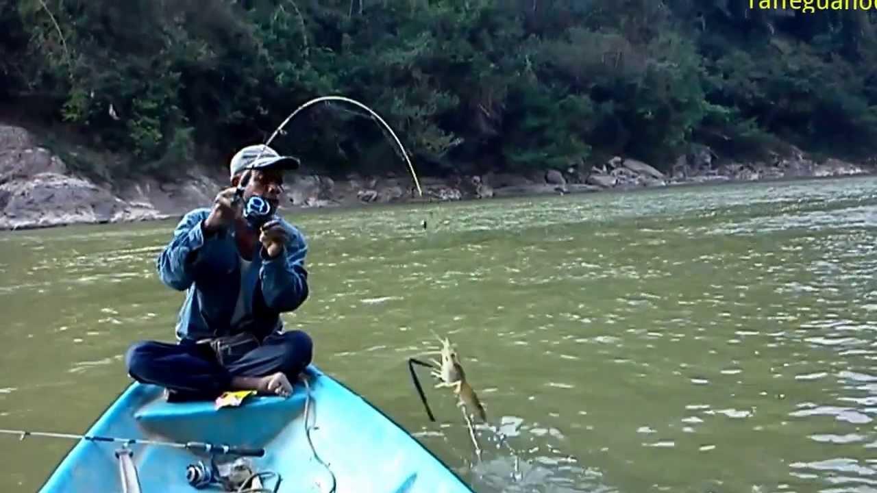 Mancing Udang Galah Di Lubuk Petai Sungai Kuala Gris
