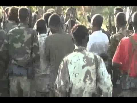 Oromo Liberation Army (OLA) Continued Its Attack Nov.28 2010