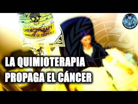 LA QUIMIOTERAPIA PROPAGA EL CANCER SEGUN UN ESTUDIO DE LA UNIVERSIDAD ALBERT EINSTEIN DE NEW YORK