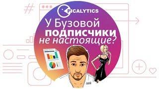 чЕСТНЫЙ Анализ Инстаграм Ольги Бузовой, сервис аналитики Picalytics