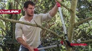 DualLINK Pruning Tools from Corona