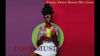 Funky Disco House Mix June