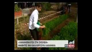Ant1 Vegetable Gardens (24-04-2013)