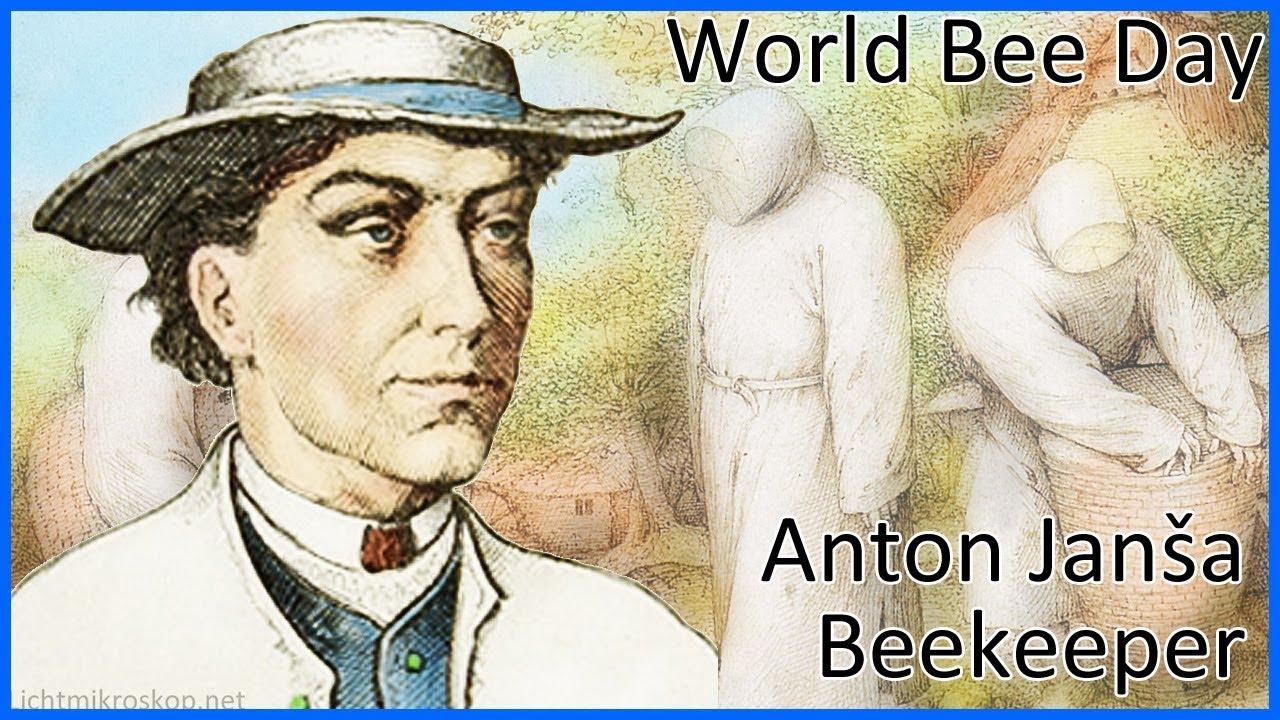 Anton Janša (1734 - 1773), Beekeeper - World bee day - YouTube