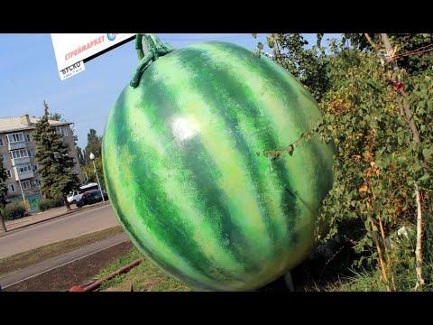 В день рождения балашовского герба в районе вокзала Балашов-1 появился арбуз