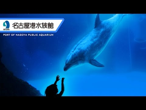 Port of Nagoya Public Aquarium / 名古屋港水族館