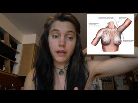Thumbnail: History & Bras: for the sake of science