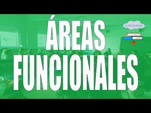 7. Las áreas funcionales