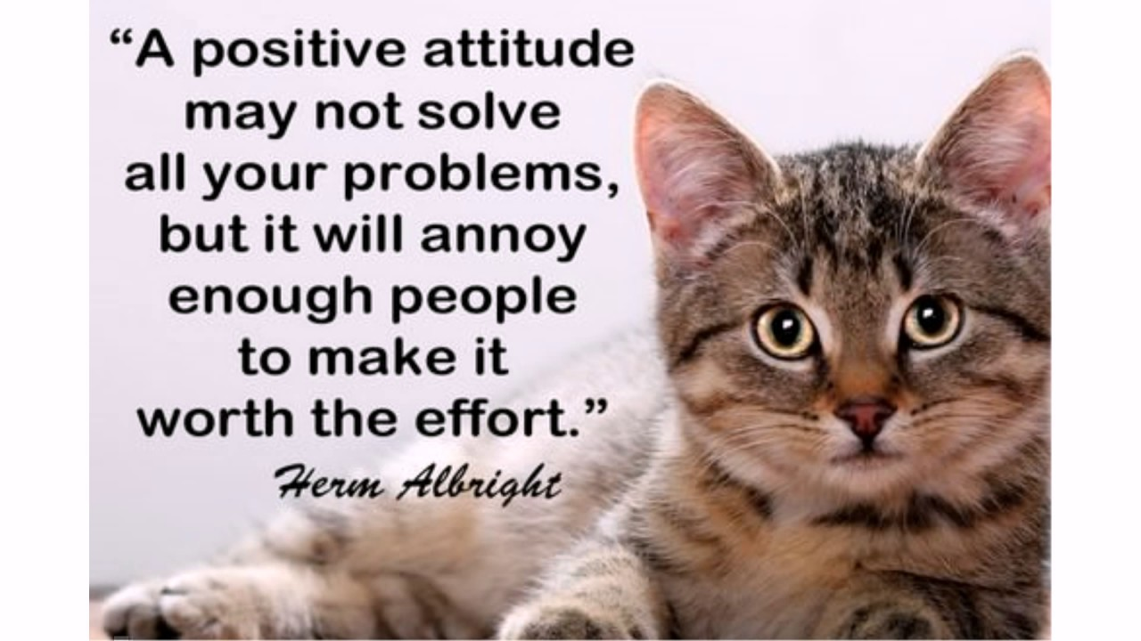 Quotes On Positive Attitude Positive Attitude Quotes  Youtube