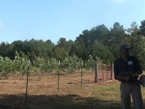 Bioenergy Field Day - Columbus, MS (9/30/2014) Part 6
