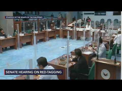Senate hearing on