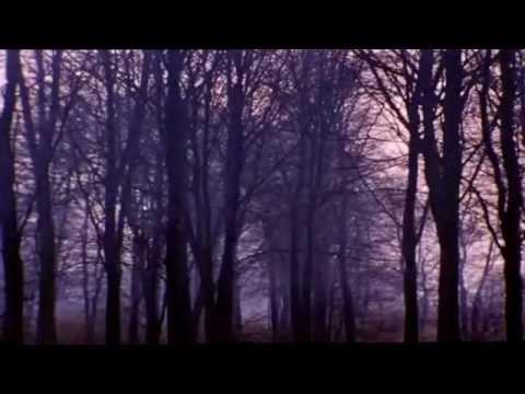 Ress 93 - Backwoods
