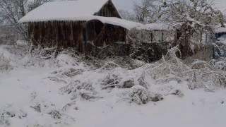 Охота на зайца зимой троплением