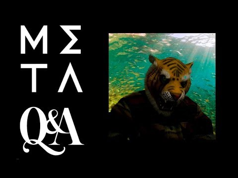 Meta Q & A -  Part I: Consciousness and Awareness