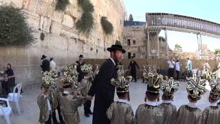 A dance of a small ultra-Orthodox Jewish children at the Western Wall, Jerusalem. Israel. Exciting.