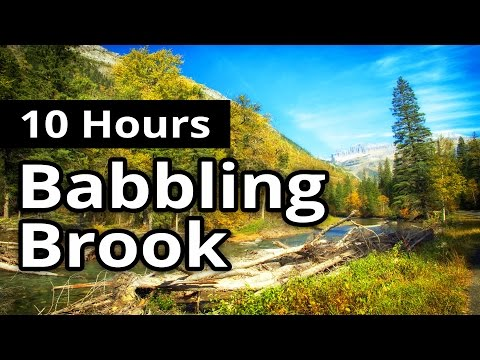 Babbling Brook in a Forest 10 HOURS - Sleep Sounds - Relaxation - Meditation