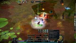 AION Gladiator PvP lvl 60 BlondiN (5)