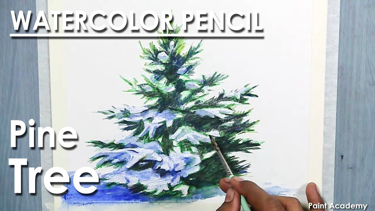 How to Draw A Pine Tree/ Christmas Tree in Watercolor Pencil - YouTube