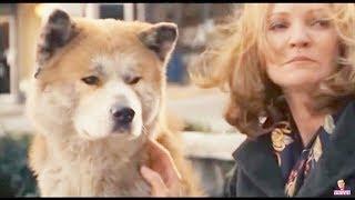 """Hachiko - """"L'amore di un animale"""" - Dal Film Commovente sul Cane Akita"""
