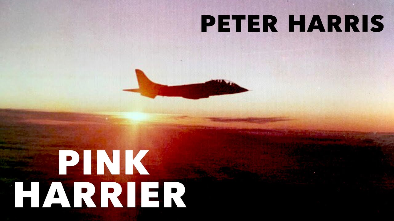 Pink Harrier | Peter Harris (New Clip!)