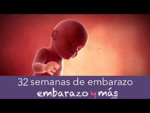 32 semanas de embarazo - Octavo mes - EMBARAZOYMAS - YouTube