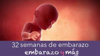 32 semanas de embarazo - Octavo mes - EMBARAZOYMAS