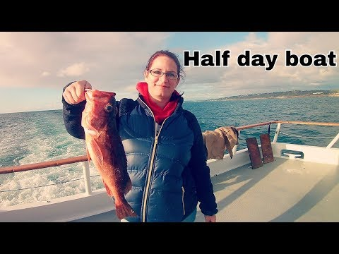 Half Day Boat On The Dolphin (she Outfished Me)