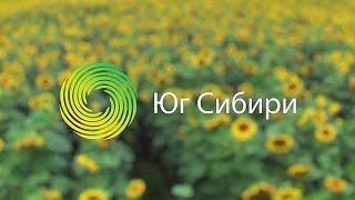 Трейлер Юг Сибири, ООО