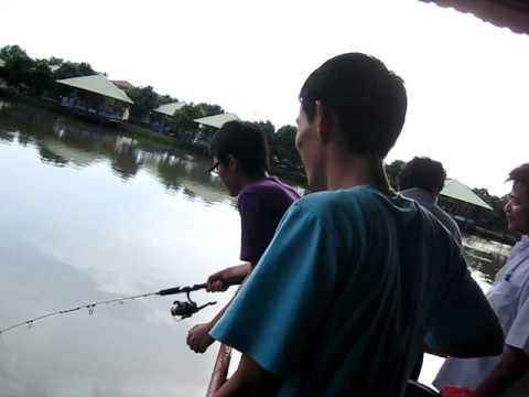 B câu cá !!! cá trôi