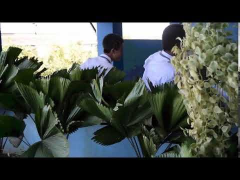 WINDOWS MEDIA VIDEO 9 SCREEN