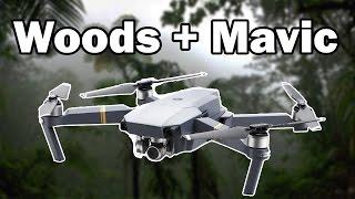 Forest Flying - DJI Mavic Pro