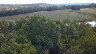 UK partners with bourbon industry leaders to map white oak genome