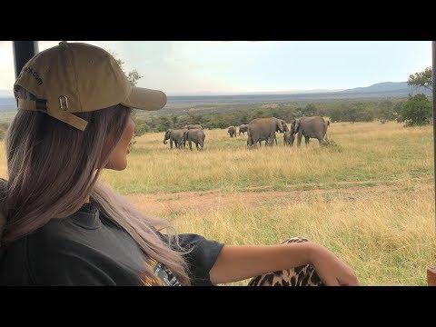 KENYA SAFARI WITH YSL   Everything you need to know about Masai Mara Bush Tops!