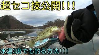超セコ技公開⁉︎ 水温3度でもつれる!? 大晦日釣行!!3匹釣れたよ。 thumbnail
