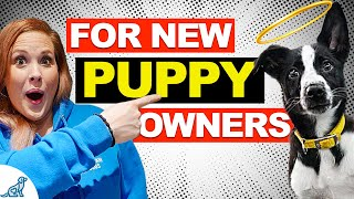 5 Common Puppy Training Mistakes That New Dog Owners Make