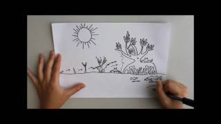 Draw mylife: A vida no Estuário (por Rhizophora mangle)
