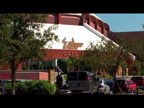 University Of South Florida Mba Sport Management