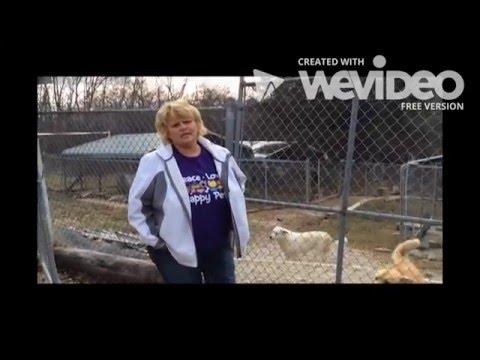 Orange County Humane Society Animal Planet Pet Nation Renovation