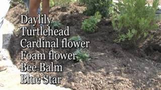 How To Construct A Rain Garden- Meadows Farms Landscaping