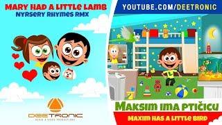 MAKSIM IMA PTICICU | Maxim Has a Little Bird | Nursery Rhyme Remix | Mary Had a Little Lamb RMX thumbnail