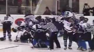 Turkish Ice Hockey Fight