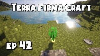 TerraFirmaCraft - #42 - Onions!!!